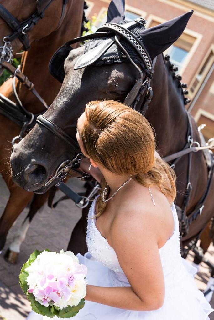 DJF_0448 standesamtliche Hochzeit Hochzeitsshooting Pferd Hochzeitsfotos Harsewinkel Fotograf Hochzeitsfotograf Kreis Gütersloh Paderborn - Diana Jill Fotografie