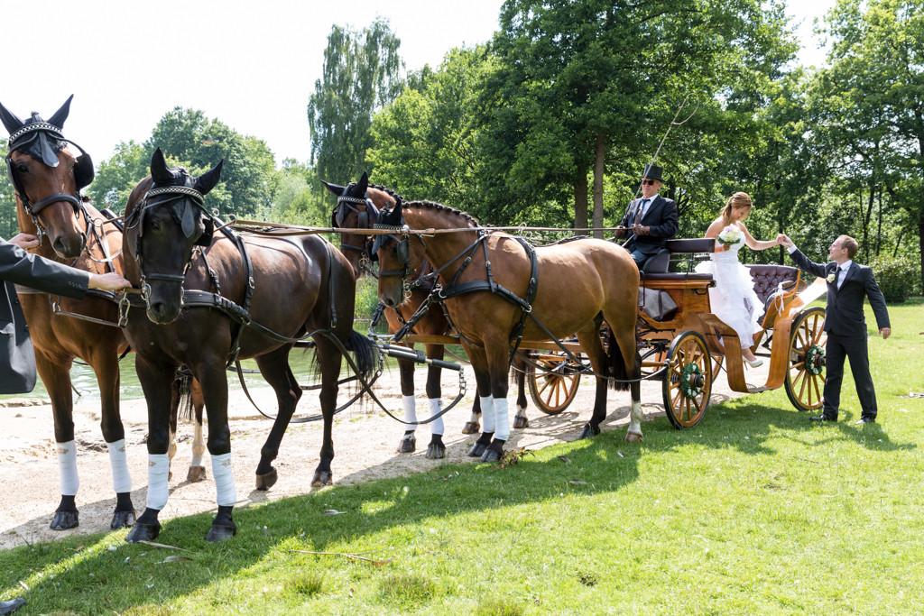 DJF_0475 standesamtliche Hochzeit Hochzeitsshooting Shooting Hochzeitsfotos Harsewinkel Fotograf Hochzeitsfotograf Kreis Gütersloh Paderborn - Diana Jill Fotografie