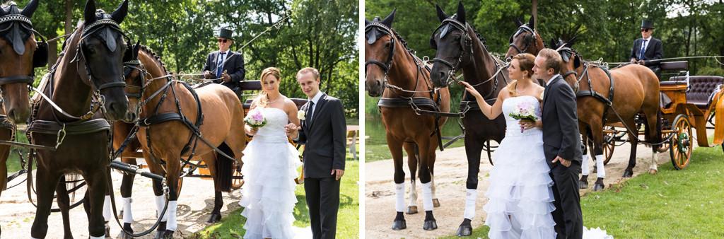 DJF_0476 standesamtliche Hochzeit Hochzeitsshooting Shooting Hochzeitsfotos Harsewinkel Fotograf Hochzeitsfotograf Kreis Gütersloh Paderborn - Diana Jill Fotografie